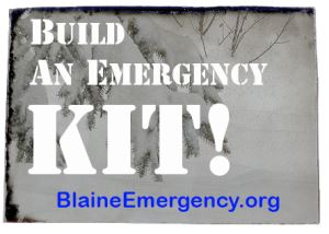 Build an Emergency Kit Logo
